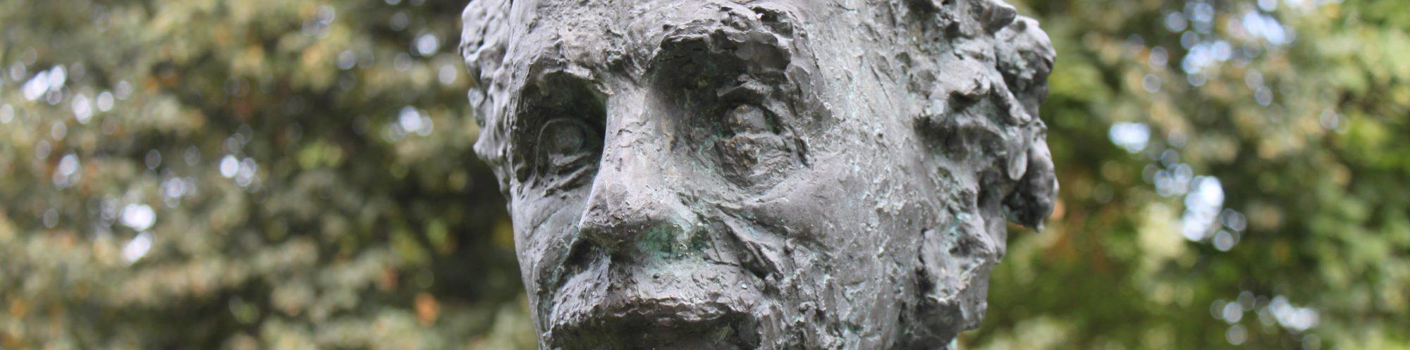 Profil Albert Einsteins