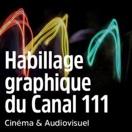 Habillage graphique du Canal vidéo interne du Centre pénitentiaire de Caen