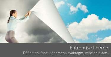 entreprise-liberee-definition-fonctionnement-avantages-inconvenients-mise-en-place