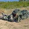 Tout savoir sur le sniper TLD
