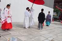 P5166267 八坂神社 結婚式