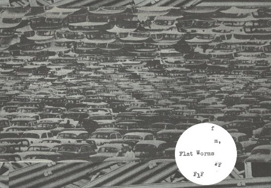 Flat Worms cover