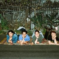 Together Pangea shares video for 'Money On It'