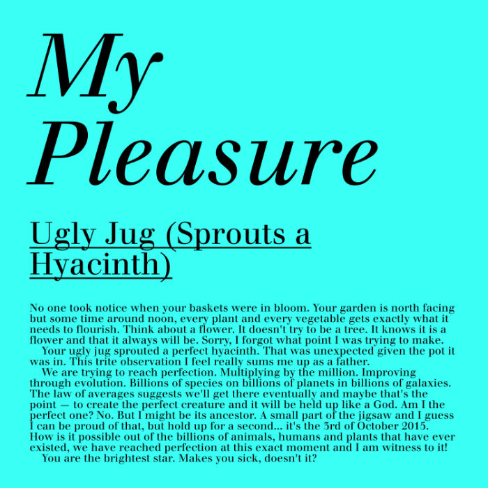 Ugly Jug (Sprouts A Hyacinth) My Pleasure cover