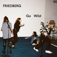 Friedberg share new single 'Go Wild'