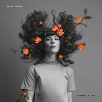 Jamie Drake shares 'Redwood Tree' video
