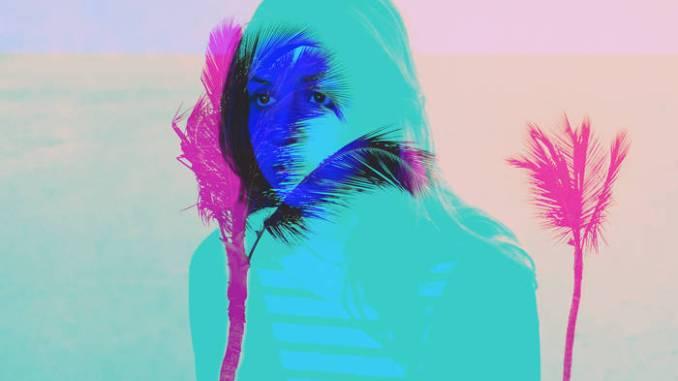 Palm Haze remix cover artwork