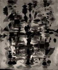 Nalini Malani, Untitled I, photogramme
