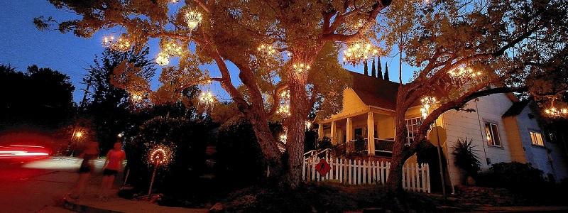chandelier-tree