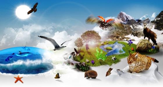 biodiversite-festivert