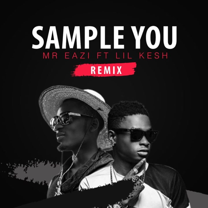 Sample You Remix