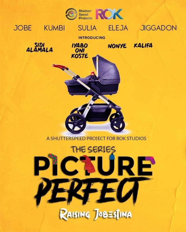Picture Perfect series raising jobestina