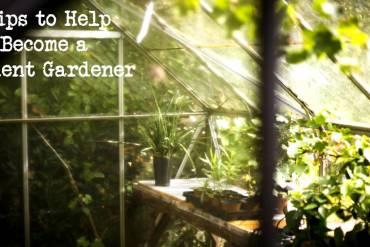 Student Gardener