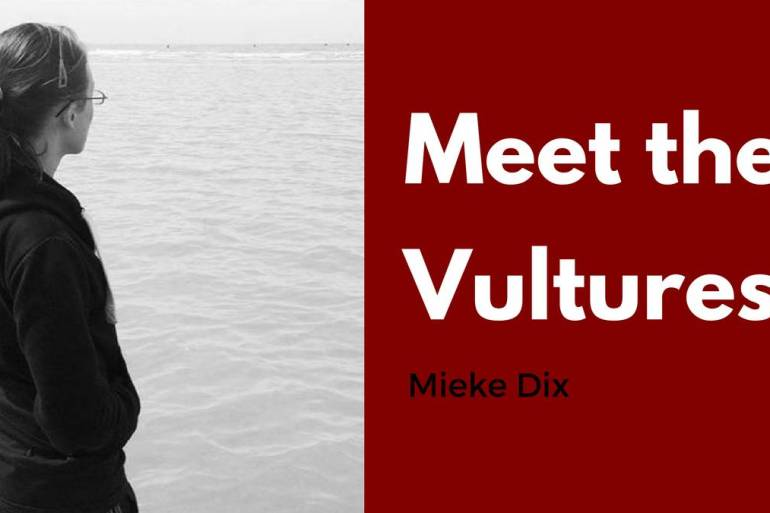 Mieke Dix Meet the Vultures