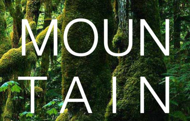 Mountainhead