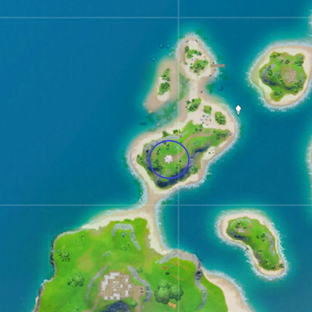 Coral Cove Fortnite