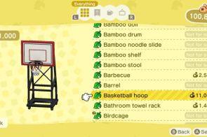 New Horizons Basketball Hoop