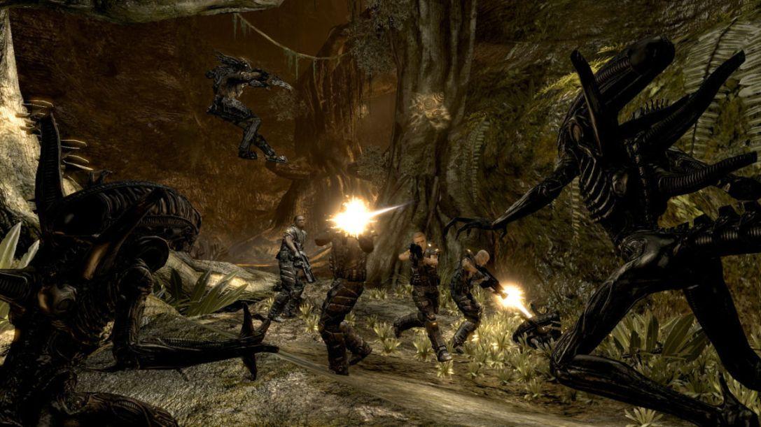 Aliens vs Predator game