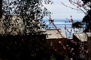 Abbazia di San Fruttuoso @Liguria _ www.culturefor.com-42
