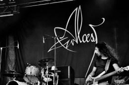 Alcest @ Motocultor 2015 -27