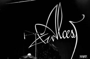 Alcest @ Motocultor 2015 -28