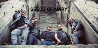 Seeds Of Mary