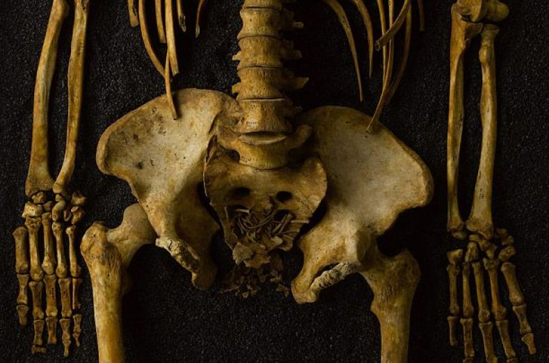 Skeleton of mother (between 18 and 25 years old) and baby (about 22 weeks old) 18th century