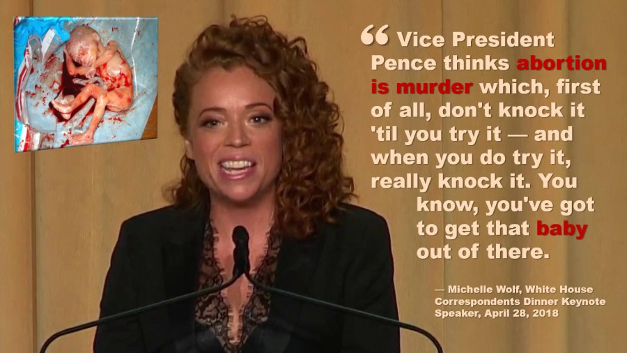 Michelle Wolf White House Correspondents Dinner