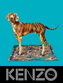 kenzo-fw13-campaign-scarf_web