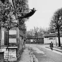Le Nouveau Réalisme (1960-1963-1970) / Yves Klein (1928-1962) § Planète bleue