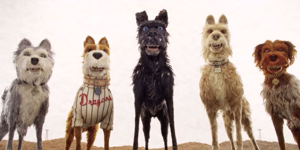 """Did You Hear the Rumour?"": The Immersive World of 'Isle of Dogs'"