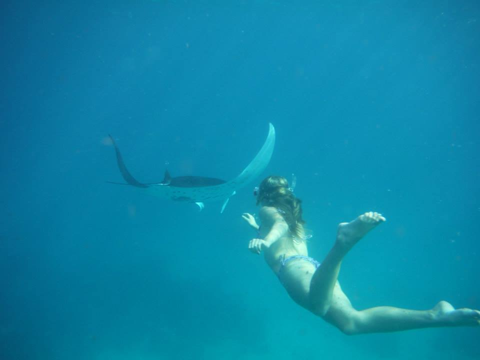 Cassidy Grant swims with stingray