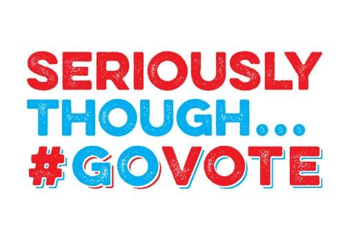 Image result for go vote