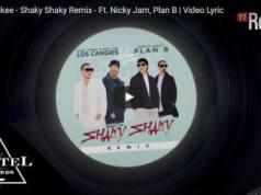Shaky Shaky Remix
