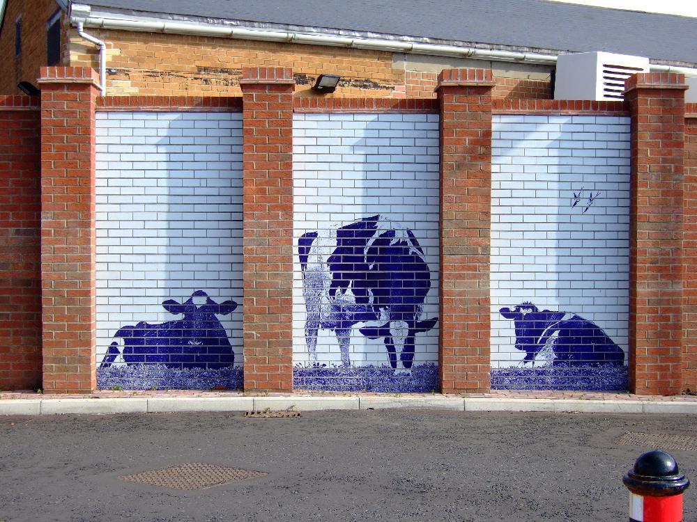 2.cows