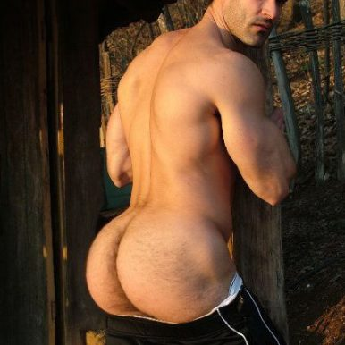 arse-of-the-year