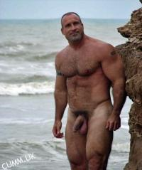 big beach bear cock
