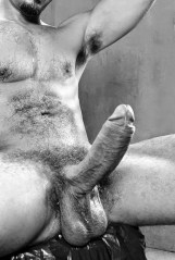 hairy big cock and nutts
