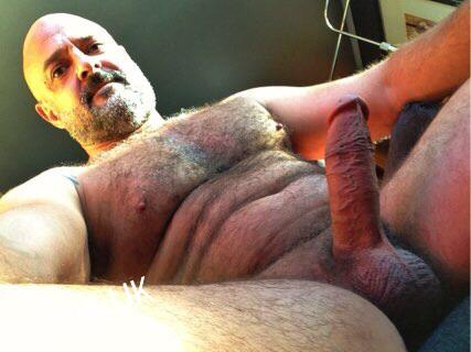 photo galleries of well hung silverdaddies