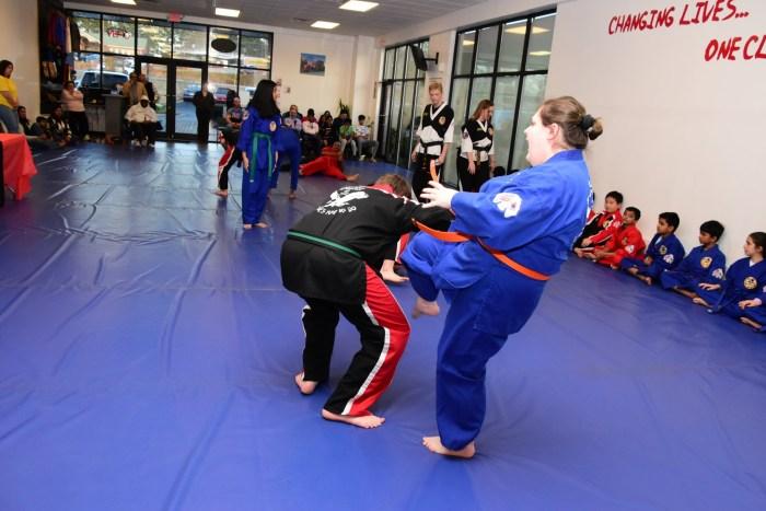 Martial Arts HapKiDo Cumming GA