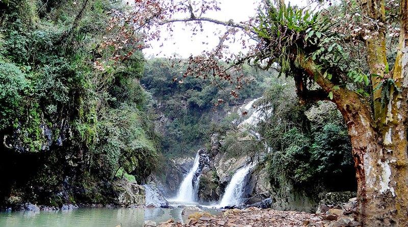 água da cascata de são miguel vista de ivoti com vegetação nas laterais
