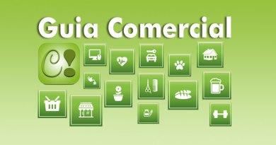 icones do guia comercial em verde