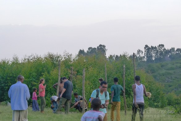 PCT's Planting trees