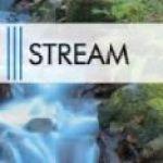 Top 5 Streamer LMHT nước ngoài được yêu thích nhất