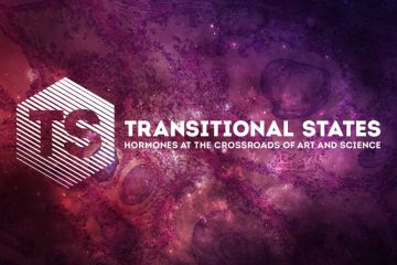 Transitional States