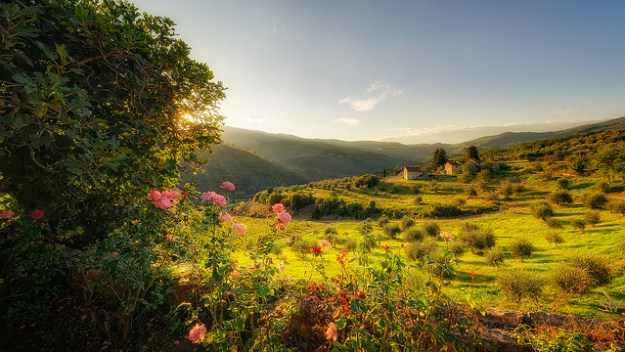The hills are alive with wine and cheese. Tuscany, photographed by Konrad Jagodziński on Flickr.