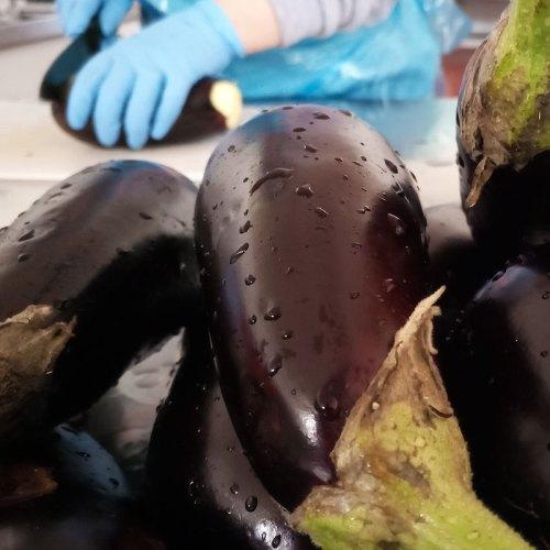 lavorazione-melanzane