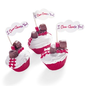 I-choo-choose-you-cupcakes-valentines-day-recipe-photo-420-FF0202VALA15