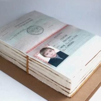 tort-v-vide-pasporta