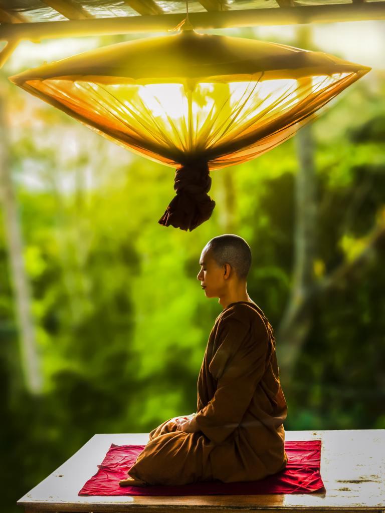 adult asian bald monk